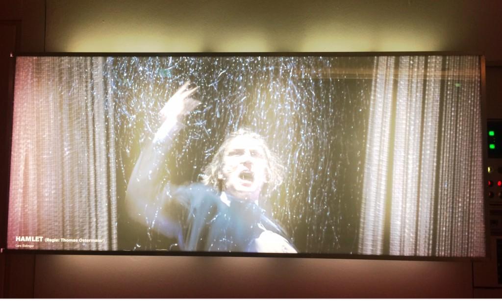 Lars Eidinger als Hamlet ganzvielleben.de